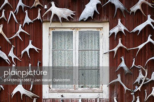 Hauswand dekoriert mit Elchgeweihen - p1418m2013887 von Jan Håkan Dahlström