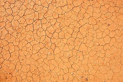 Vertrocknetes aufgebrochenes Feld, Fuerteventura - p1162m973180 von Ralf Wilken