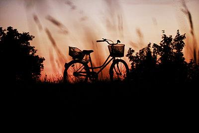 Fahrrad    - p450m2005766 von Hanka Steidle