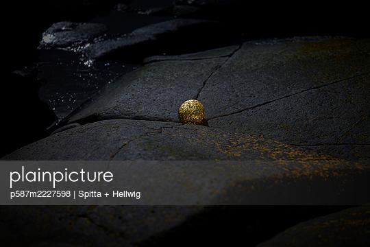 p587m2227598 by Spitta + Hellwig