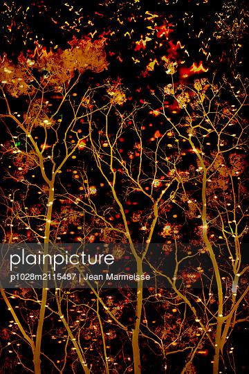 Vegetation - p1028m2115487 von Jean Marmeisse