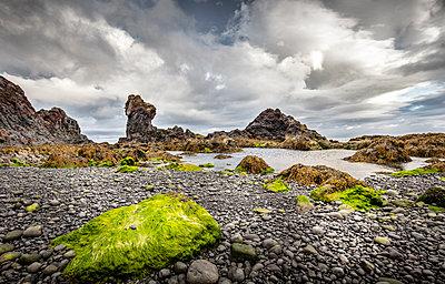 Felsen am Meer - p1276m1465303 von LIQUID