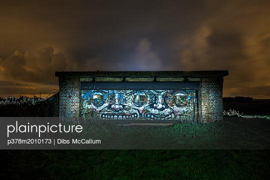 p378m2010173 von Dibs McCallum