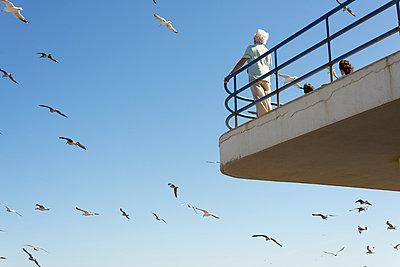 white hair and seagulls - p1201m1051233 by Paul Abbitt