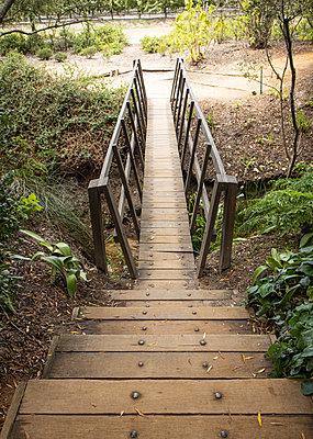 Small wooden bridge in a garden - p1640m2254729 by Holly & John
