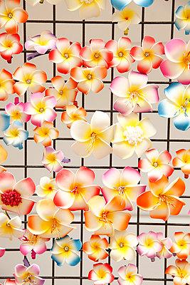 Plastic flowers - p249m970457 by Ute Mans