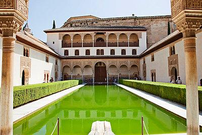 The Alhambra - p7050003 by Florian Tröscher