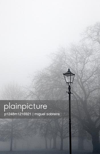 Clapham Commons - p1248m1216921 von miguel sobreira