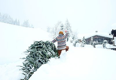 Man coming home, waving and pulling Christmas tree in the snow - p300m2155329 by Hans Huber