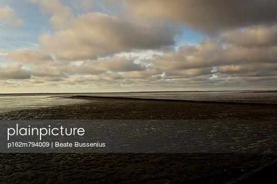 Nordsee - p162m794009 von Beate Bussenius