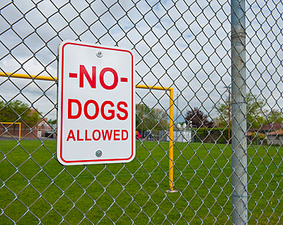 No Dogs Allowed Sign - p555m1453037 by Spaces Images