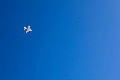 Flugzeug - p1057m908330 von Stephen Shepherd