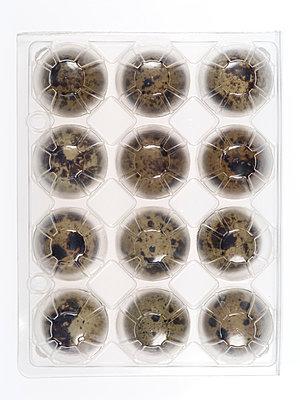 Wachteleier - p401m970826 von Frank Baquet