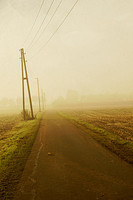 Country road - p470m886237 by Ingrid Michel