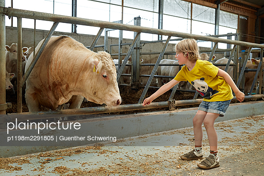 Boy on a farm - p1198m2291805 by Guenther Schwering