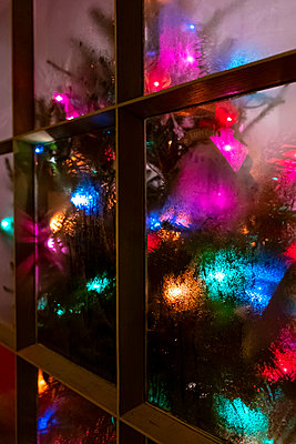 Christmas tree decoration in the window - p1057m2045506 by Stephen Shepherd
