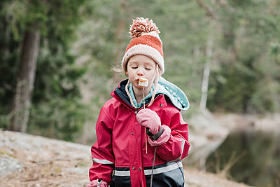 young girl eating marshmallows by a campfire in the forest in Sweden - p1166m2179468 by Cavan Images