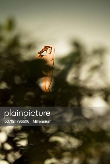 Venus behind the trees - p378m795596 by Millennium