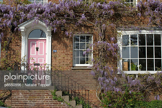 House with wisteria, Kew, London - p8550996 by Natalie Tepper