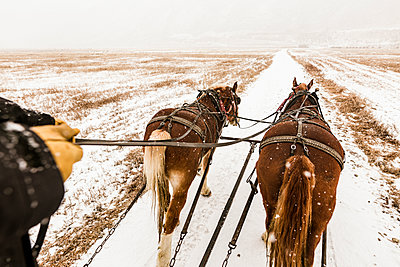 Cropped hands of person riding horse cart during snowfall - p1166m1545315 by Cavan Social