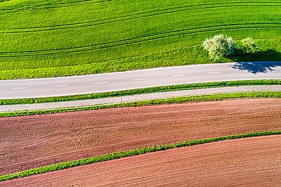 Germany, Baden-Wuerttemberg, Swabian Franconian forest, Rems-Murr-Kreis, plowed field and road - p300m1587647 by Stefan Schurr