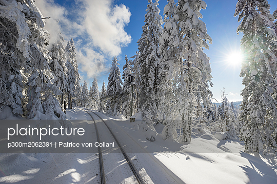 Germany, Saxony-Anhalt, Harz National Park, Brocken, rail tracks of Harz Narrow Gauge Railway in winter against the sun - p300m2062391 by Patrice von Collani