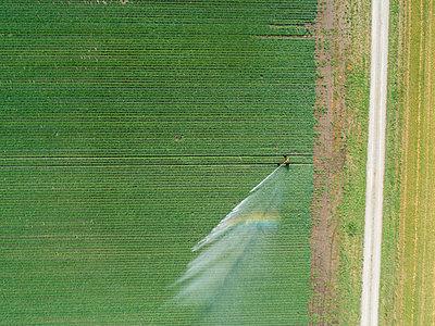 Künstliche Bewässerung - p1079m2157743 von Ulrich Mertens
