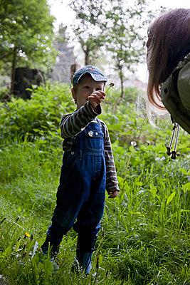 Kleiner Junge mit Pusteblume - p880m908046 von Claudia Below