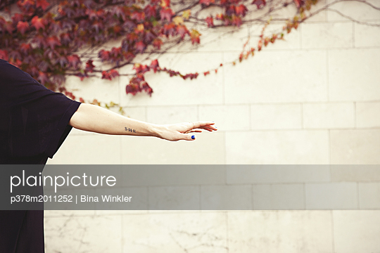 p378m2011252 von Bina Winkler