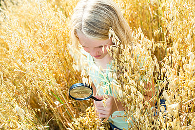 Little girl examining wheat ears in field, with magnifying glass - p300m2160743 von Fotoagentur WESTEND61