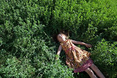 Lying in Alfalfa - p1636m2216359 by Raina Anderson