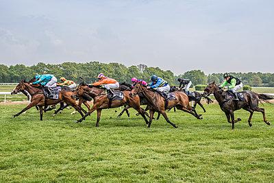 Pferderennen - p401m1465476 von Frank Baquet