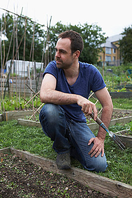 Man working in allotment - p429m712217f by Danielle Wood