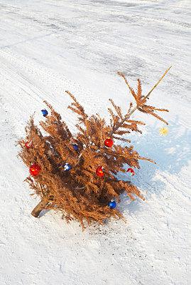 Weihnachten ist zu Ende - p509m786313 von Reiner Ohms