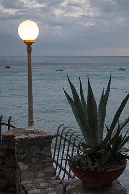 Abend am Meer mit Agave - p1079m1552879 von Ulrich Mertens