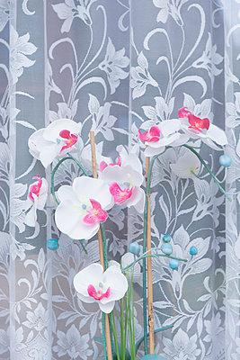 Orchideen - p1164m951908 von Uwe Schinkel