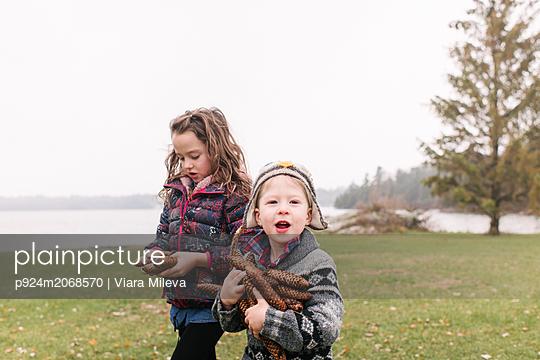 Siblings with armful of brown pine cones, Kingston, Ontario, Canada - p924m2068570 by Viara Mileva