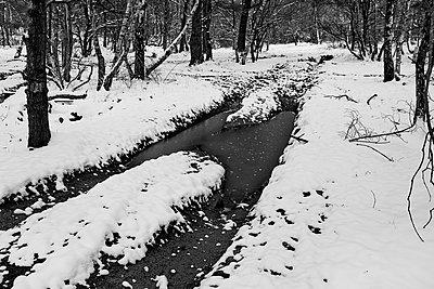 Verschneiter Bach im Winter - p1090m1558696 von Gavin Withey