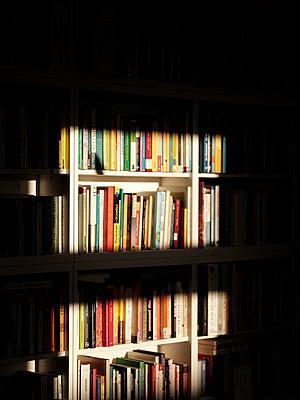 Bücher im Morgenlicht - p551m2203332 von kaipeterstakespictures