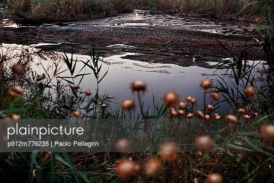 p912m776235 von Paolo Pellegrin