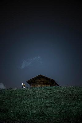 Alpine farming - p248m1040696 by BY