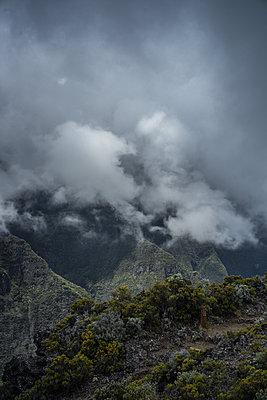 Island, La Reunion - p1402m2133099 by Jerome Paressant