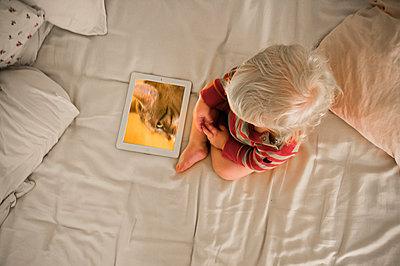 Little child looking at his tablet - p1418m2014914 by Jan Håkan Dahlström