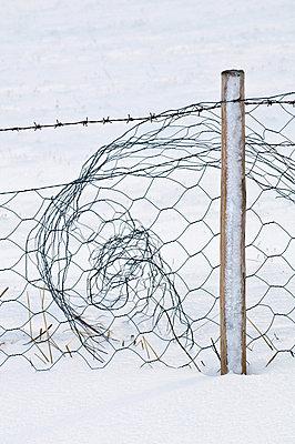 Vestvagoy - p816m745107 by Bjørn Jørgensen