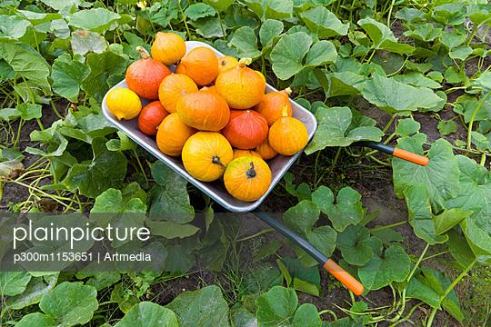 p300m1153651 von Artmedia
