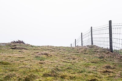 Fence in a field in Wales - p1057m1222773 by Stephen Shepherd
