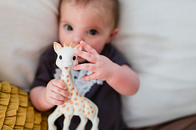 01.02.14 - p1100m1483722 by Mint Images