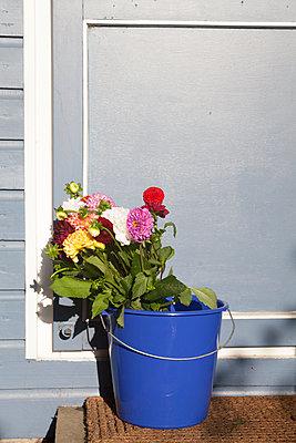 Nette Nachbarschaft - p454m1195980 von Lubitz + Dorner