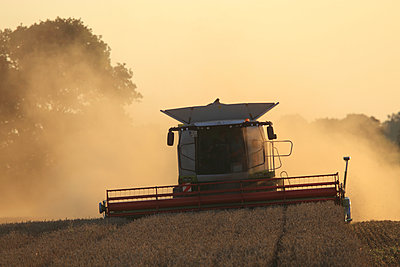 Combine harvester - p1016m924711 by Jochen Knobloch