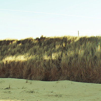 Dune - p1096m880007 by Rajkumar Singh